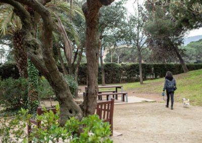 Noia passejant gossos en un parc